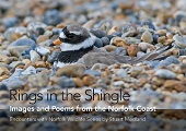 Rings in the Shingle: Images and Poems from the Norfolk Coast
